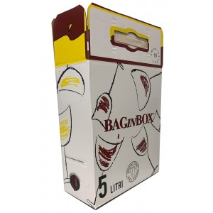 Box for 5 L bag in box